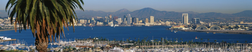 Nelson Consulting and Training - Human Resources Consulting and Training for San Diego and beyond.